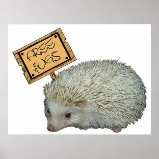 Free Hugs Hedgehog Poster