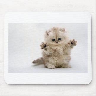 Free Hugs Kitten Mouse Mat