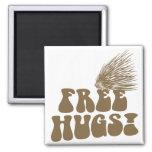 Free Hugs Porcupine Love