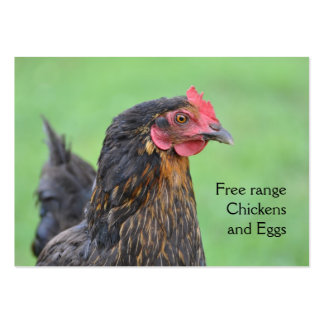 Free range black chicken eggs pack of chubby business cards