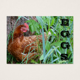 Free Range EGGS chicken business card