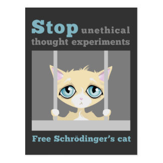 Free Schrodinger s Cat Post Card