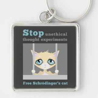 Free Schrodinger's Cat Silver-Colored Square Key Ring