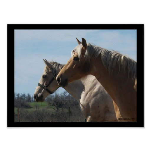 Free Spirit, Horse Lover's Poster - Large