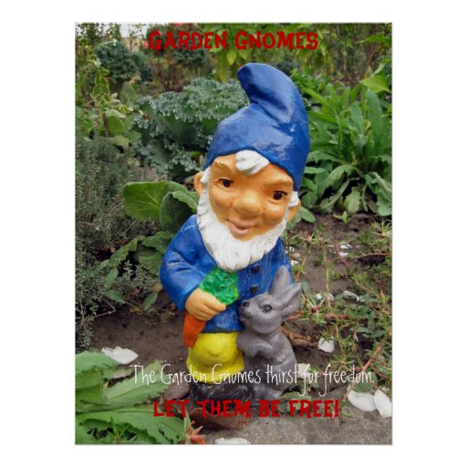 Free the Garden gnomes Poster