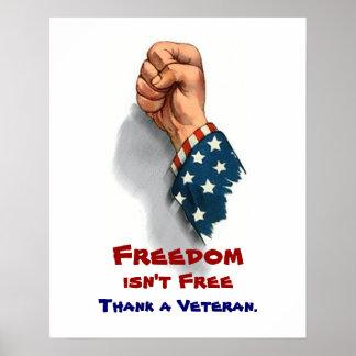 Freedom and Veteran Patriotic Poster