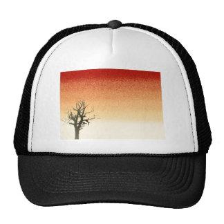 Freedom Design - ReasonerStore Cap