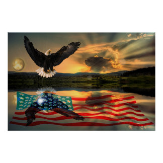 Freedom-Eagle-W-Flag-W-Star-burst-2010 Poster
