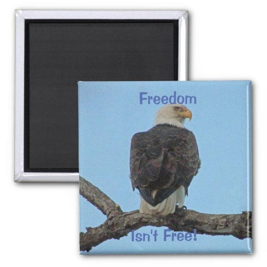 Freedom Isn't Free Magnet