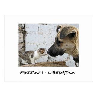 Freedom = Liberation Post Card