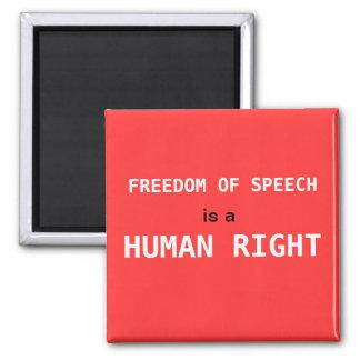 Freedom of Speech Magnet