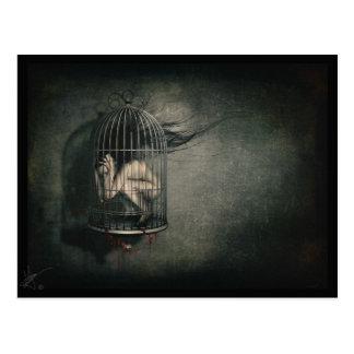 'Freedom' Postcard
