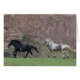 Freedom Run - Galloping to Freedom Greeting Card