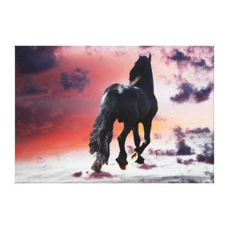 Freedom runner black horse canvas print