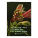 Freesia Blossoms Greeting Card