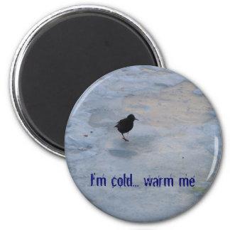 Freezing bird refrigerator magnets