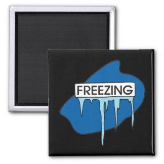 Freezing Fridge Magnets