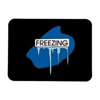 Freezing Vinyl Magnets