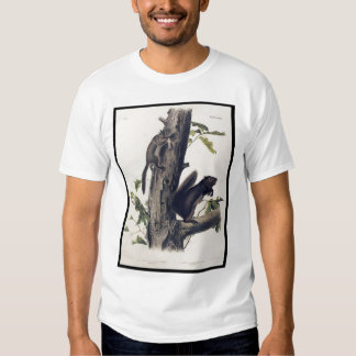 Fremont's Squirrel; Sooty Squirrel Tee Shirt