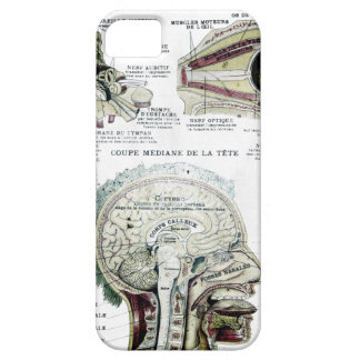 French Anatomy Case-Mate Case iPhone 5 Cover