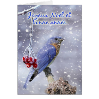 French - Blue Bird Christmas Greeting Card