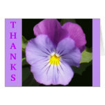French Blue Purple Pansy Note Card