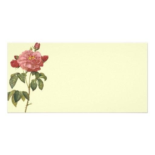 French Botanical Beauty *Vintage Flowers* Customized Photo Card