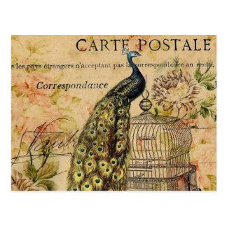 french botanical floral birdcage vintage peacock postcard