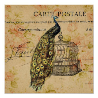 french botanical floral birdcage vintage peacock poster