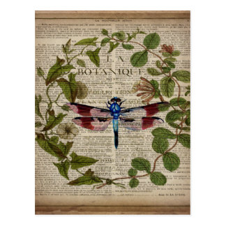 french botanical leaves modern vintage dragonfly postcard