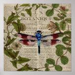 french botanical leaves modern vintage dragonfly poster