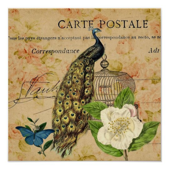 french botanical rose birdcage vintage peacock poster