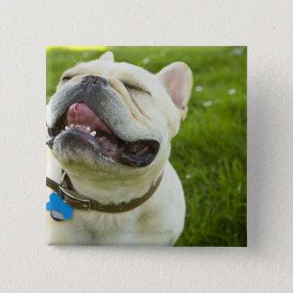 French Bulldog 15 Cm Square Badge