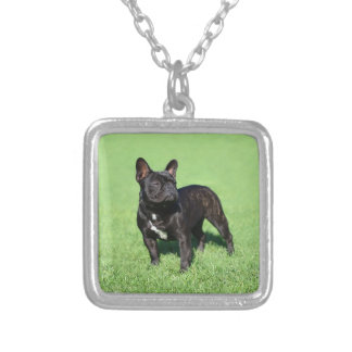 French Bulldog 2 Silver Plated Necklace