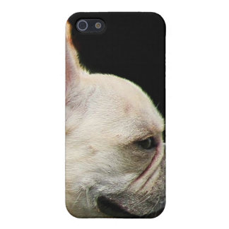 French Bulldog 4  Case For The iPhone 5