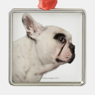 French Bulldog (4 years old) close-up Christmas Ornament