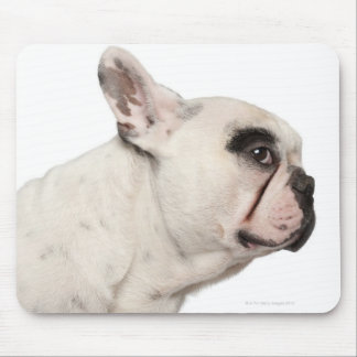 French Bulldog (4 years old) close-up Mouse Mat