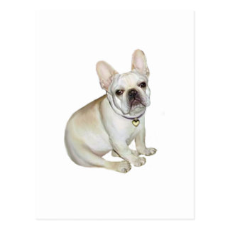French Bulldog (A) Postcard