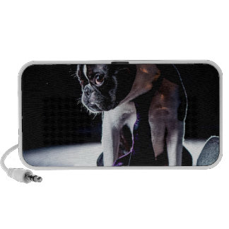 French Bulldog Amateur Photographer Dog Mp3 Speakers