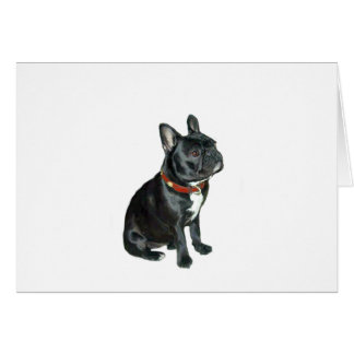 French Bulldog - Black with red collar Card