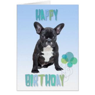 French Bulldog Blue Happy Birthday Greeting Card