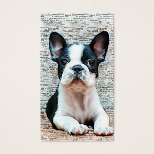 French Bulldog business cards