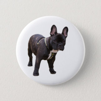 French Bulldog button, pin, gift idea 6 Cm Round Badge