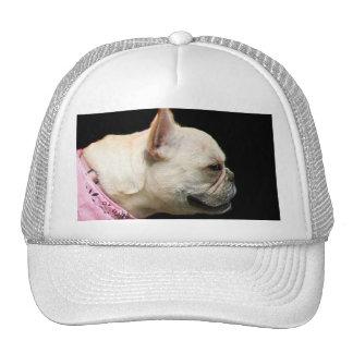 French Bulldog cap