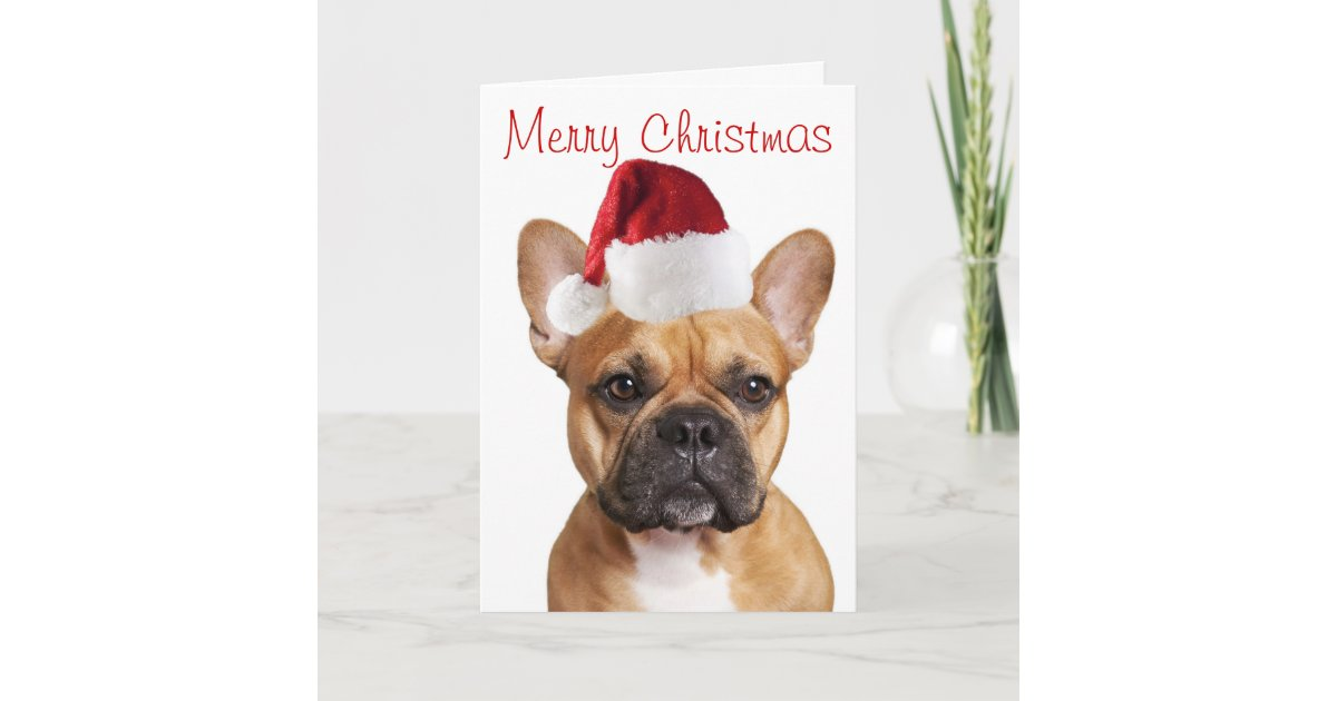 French Bulldog Christmas card | Zazzle.co.uk
