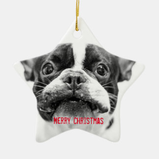 French Bulldog Christmas Ornament Star Custom