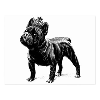 French Bulldog Crown Dog Puppy Postcard