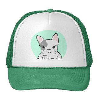 French Bulldog, Digital Illustration, Dog Cap