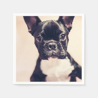 French Bulldog Disposable Napkins