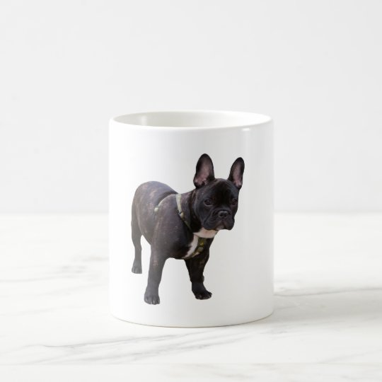 French Bulldog dog beautiful photo mug, gift Coffee